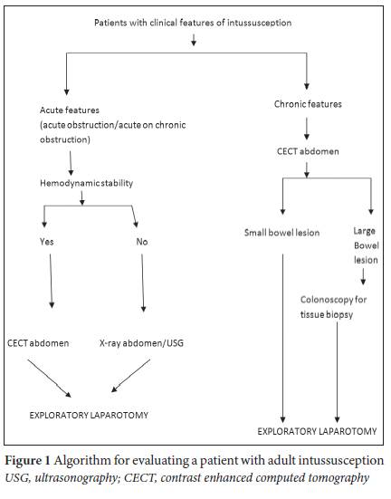the algorithm for evaluating a patient with adult intussusception is  presented in fig 1