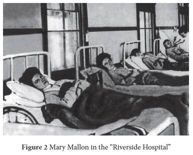 history of typhoid fever pdf